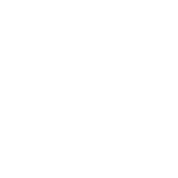 Will Strategy
